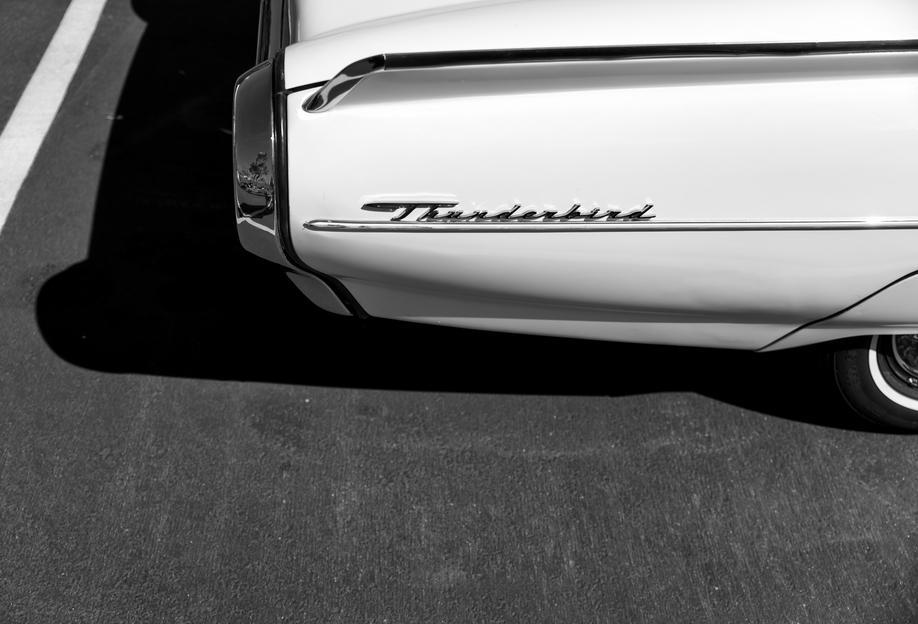 Monochrome Thunderbird Acrylic Print