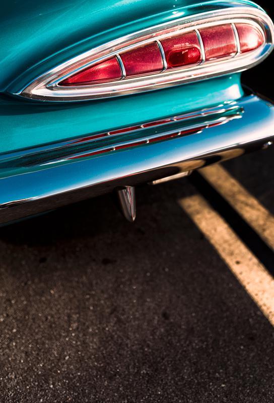 Impala Colors Acrylic Print