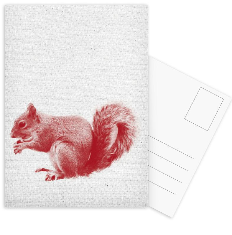 Squirrel Postcard Set