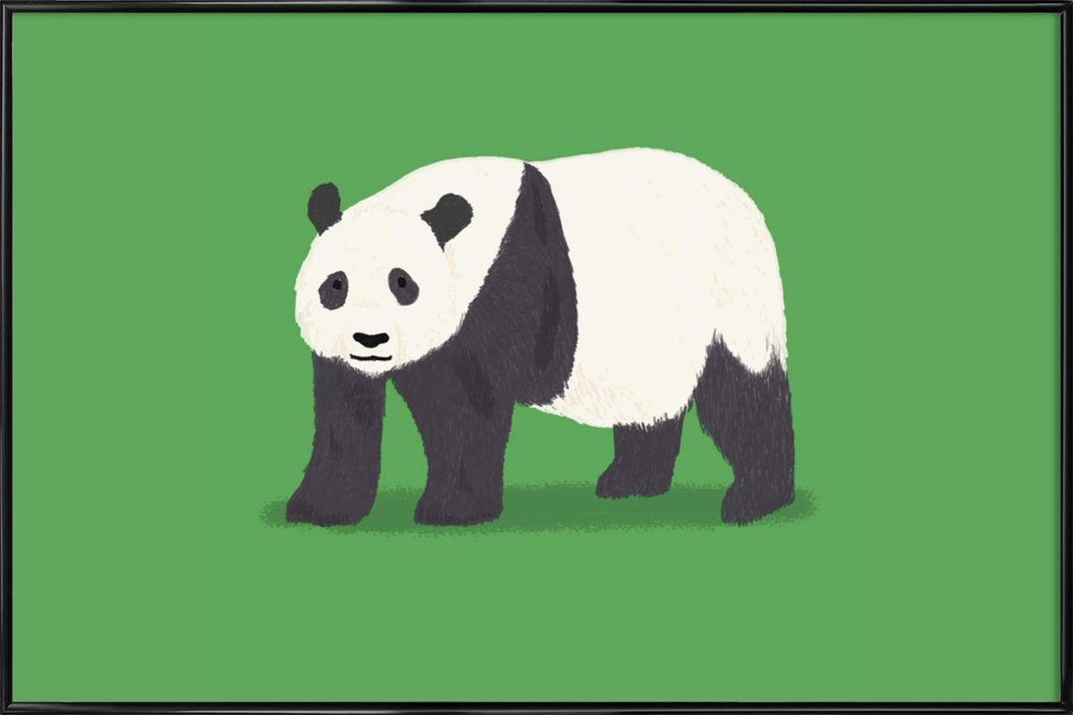 Panda ingelijste poster