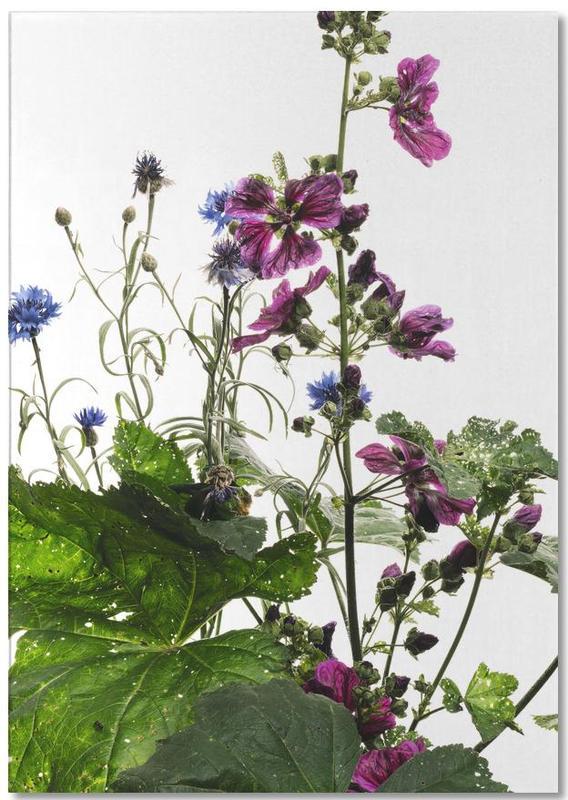 Flora - Wilde Malve Notepad