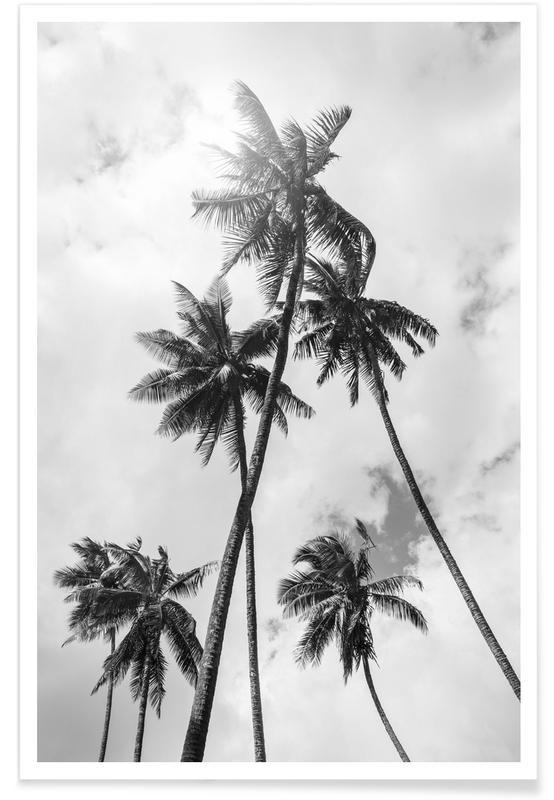 Palme Bounty Poster