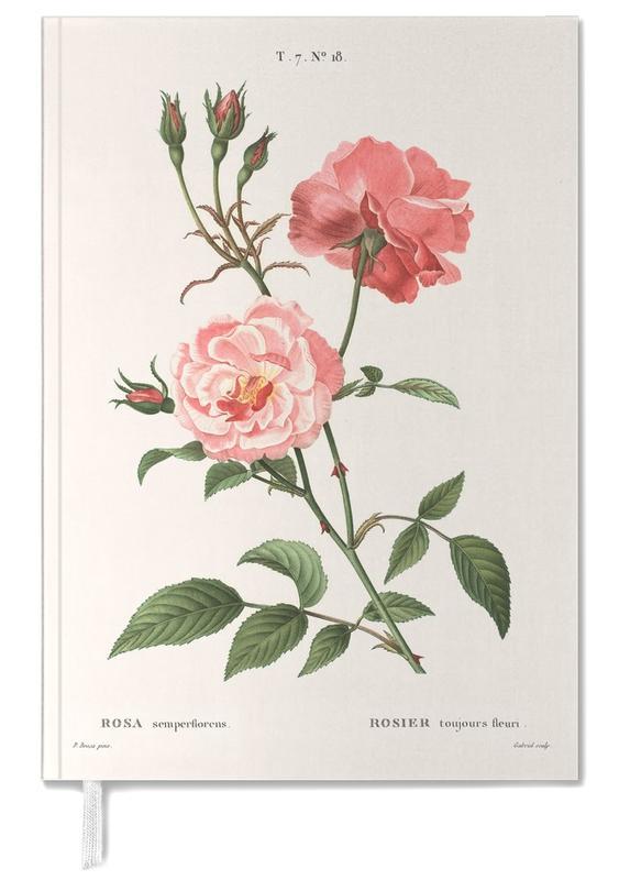 Rosier - Toujours Fleuri -Terminplaner