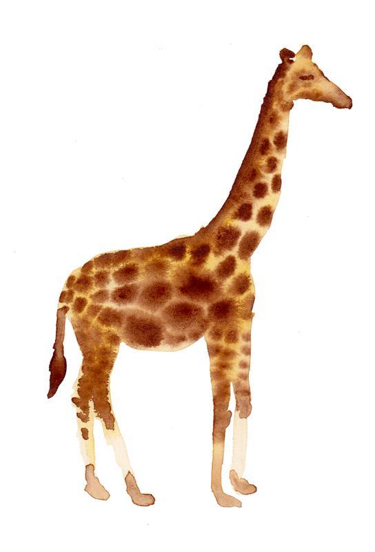 Giraffe Aluminium Print