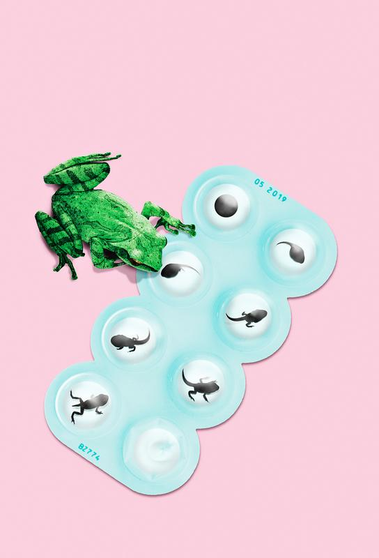 Frog Pills Acrylic Print