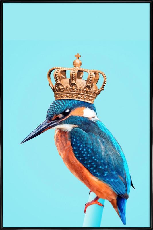 Kingfisher -Bild mit Kunststoffrahmen