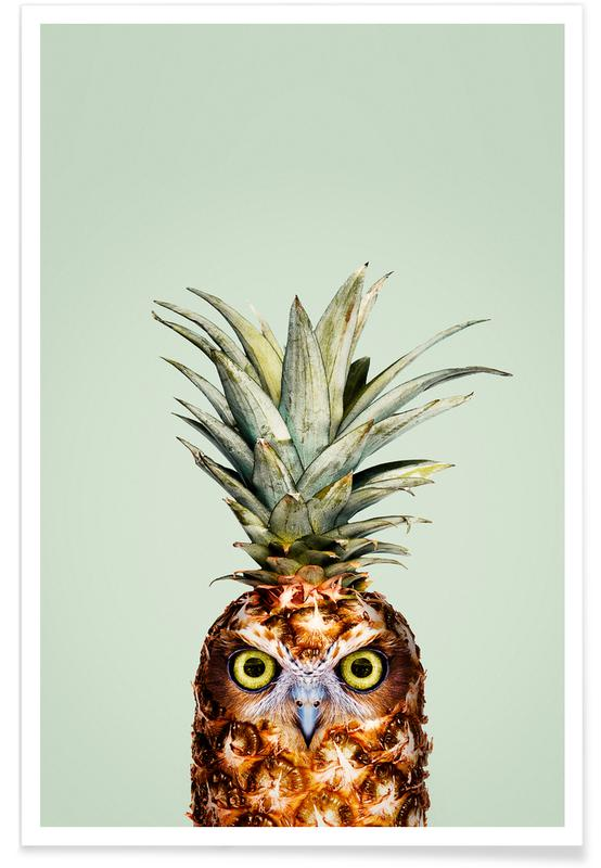 Pineapple Owl -Poster