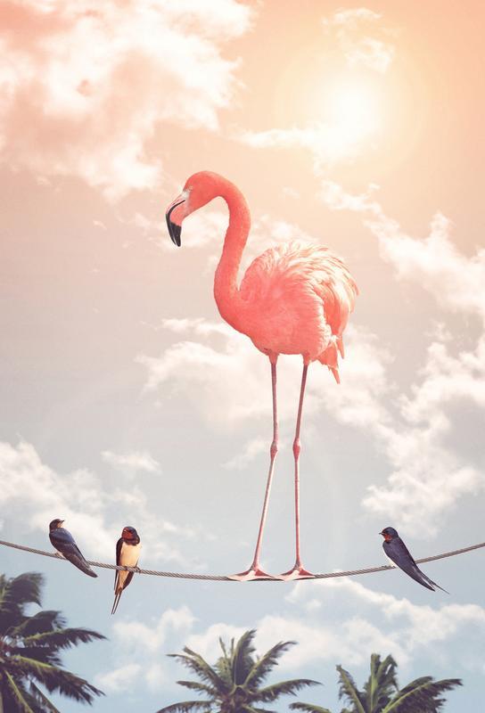 Flamingo and Friends Acrylic Print