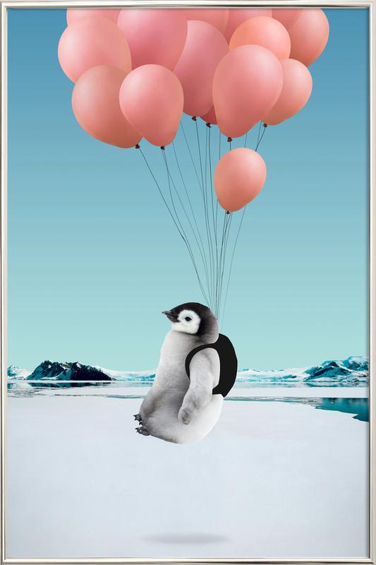 Penguin affiche sous cadre en aluminium