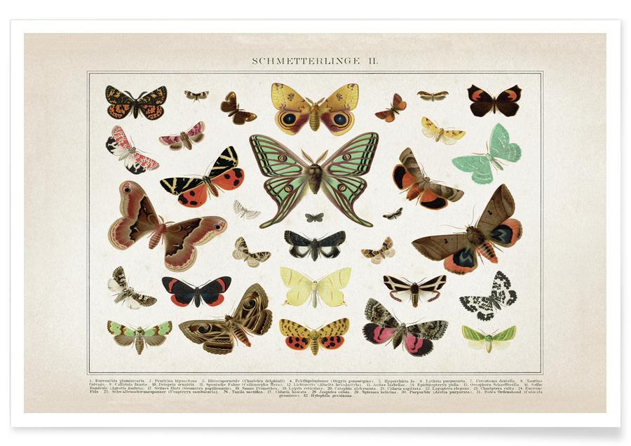 Schmetterlinge 2 - Brockhaus affiche