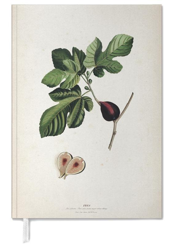 Ficus - Ehret Personal Planner