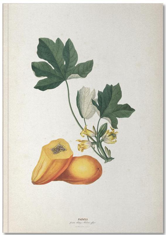Papaya - Ehret Notebook