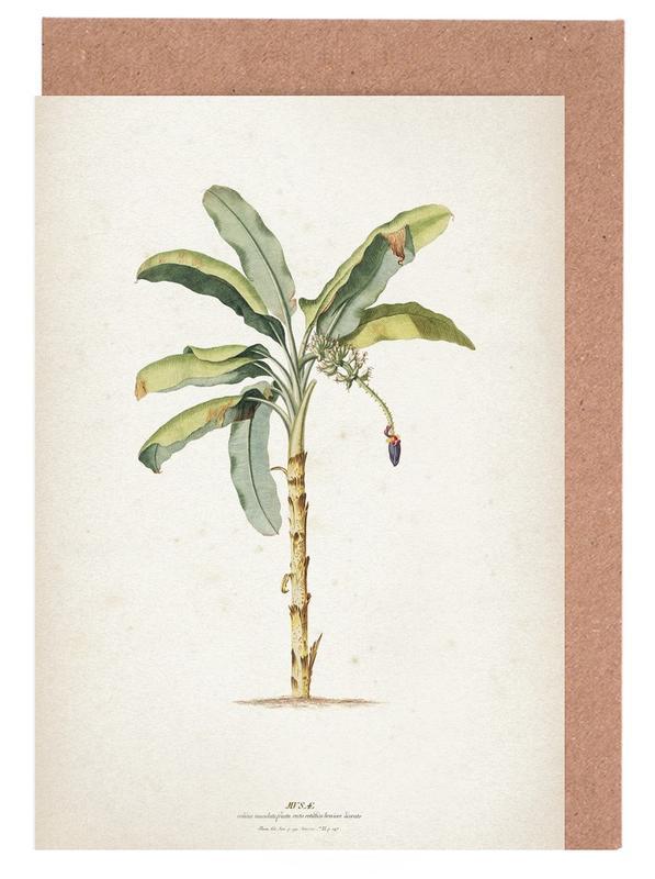Musae Maculato - Ehret cartes de vœux