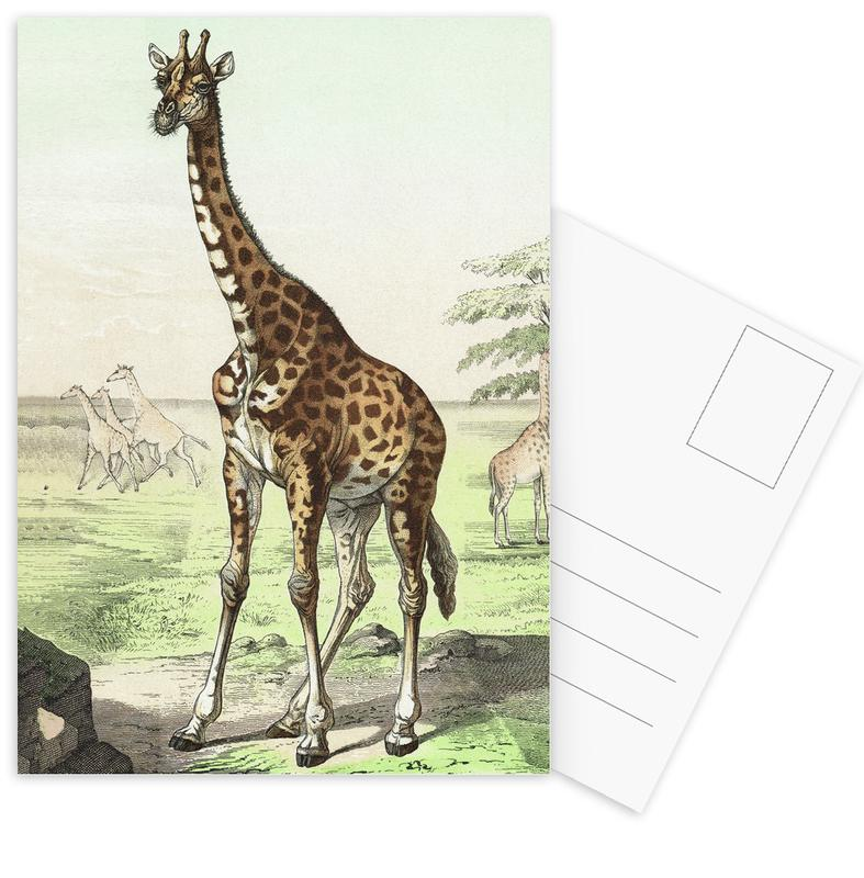 Wiederkäuer 22 - Schubert Postcard Set