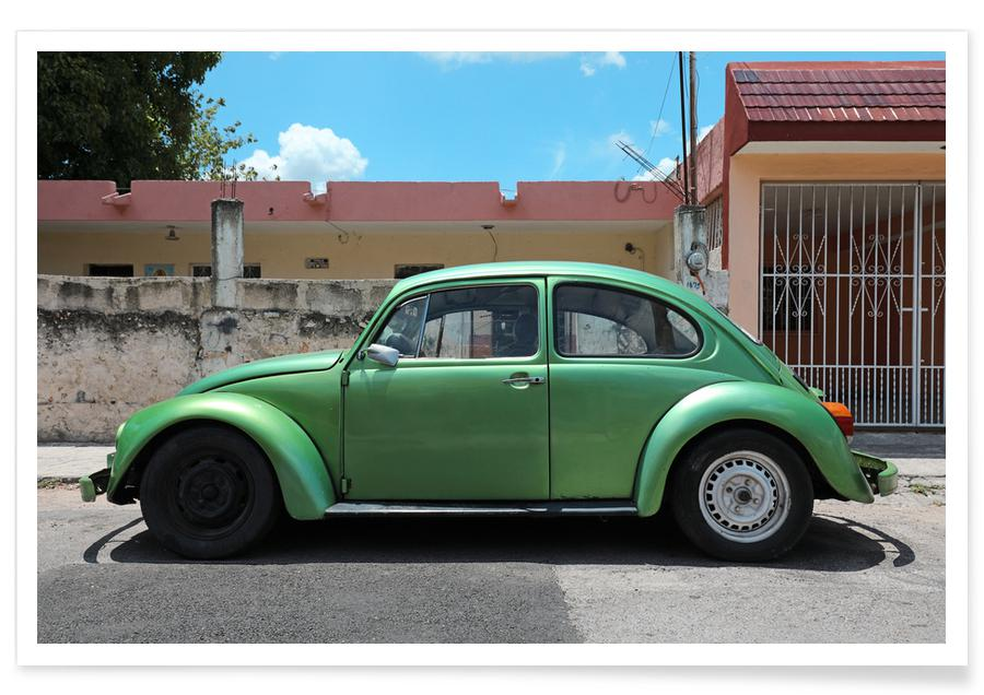 Mexican Beetle 14 -Poster