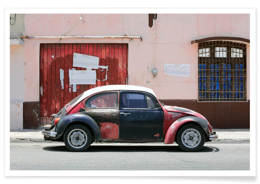 Mexican Beetle 5 -Poster