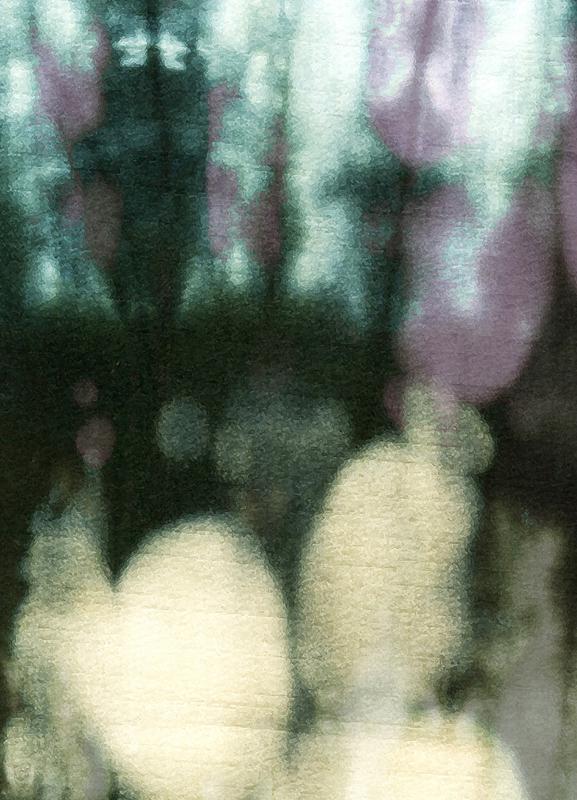 Amatsubu toile