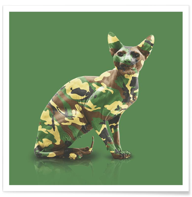 Camoucat Poster
