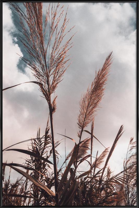 Grass II Framed Poster