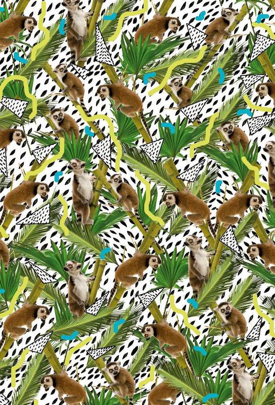 Lemur acrylglas print