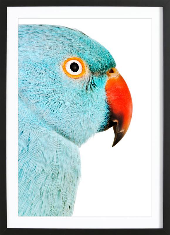 Beautifully Blue Framed Print