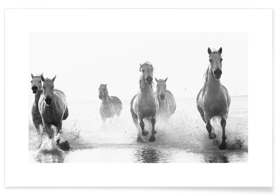 Galloping Through the Surf Poster