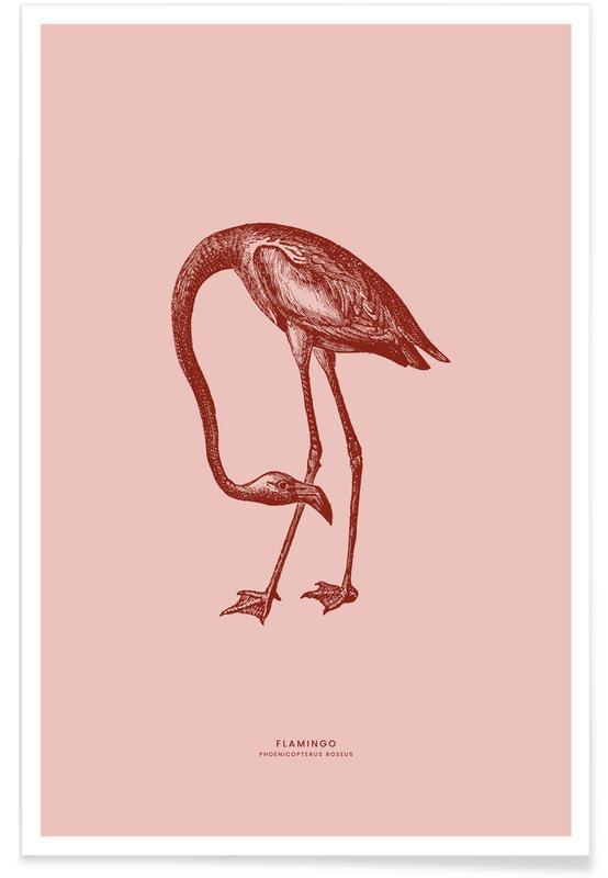 Flamingo II Poster