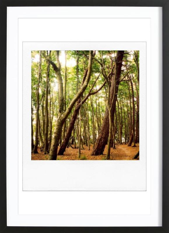 Forest affiche sous cadre en bois