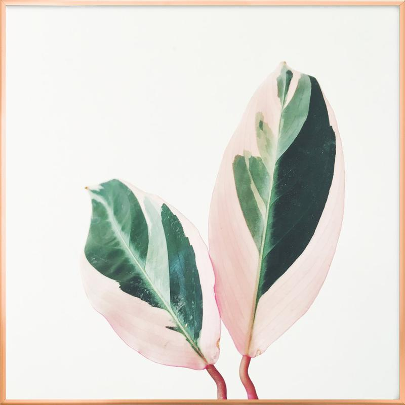 Pink Leaves Poster in Aluminium Frame
