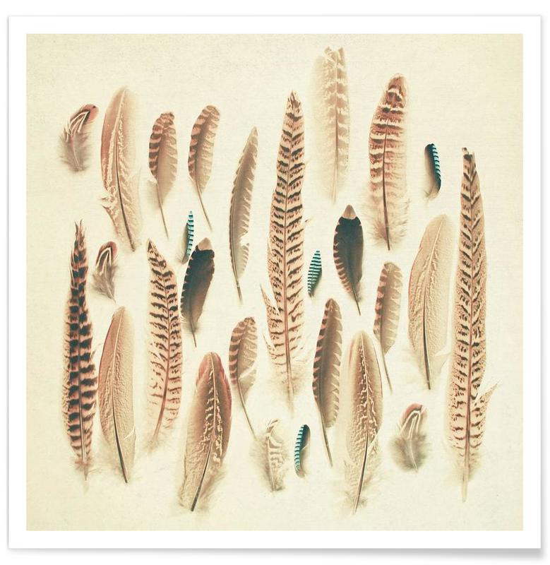 Found feathers Poster