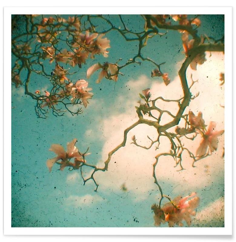 Magnolia fall Poster