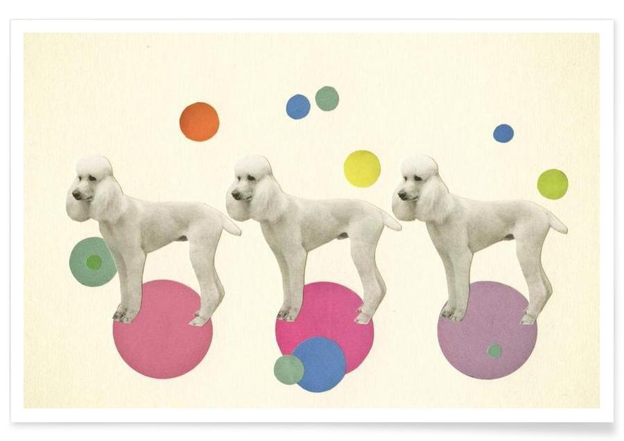 Oodles of poodles Poster