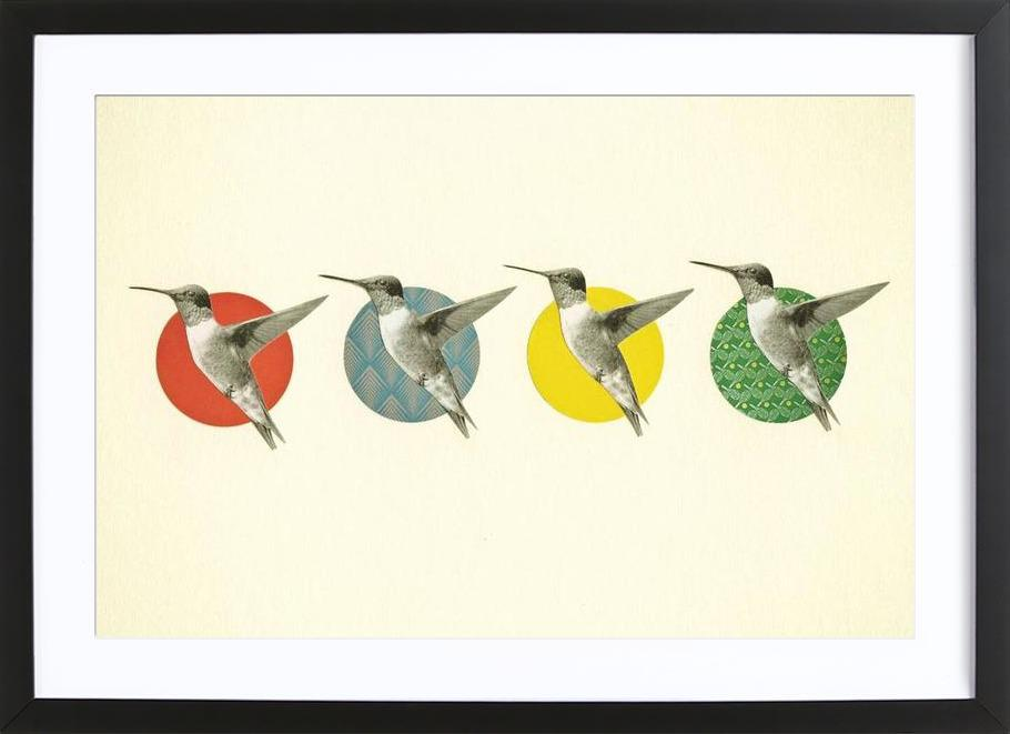 The hummingbird dance -Bild mit Holzrahmen