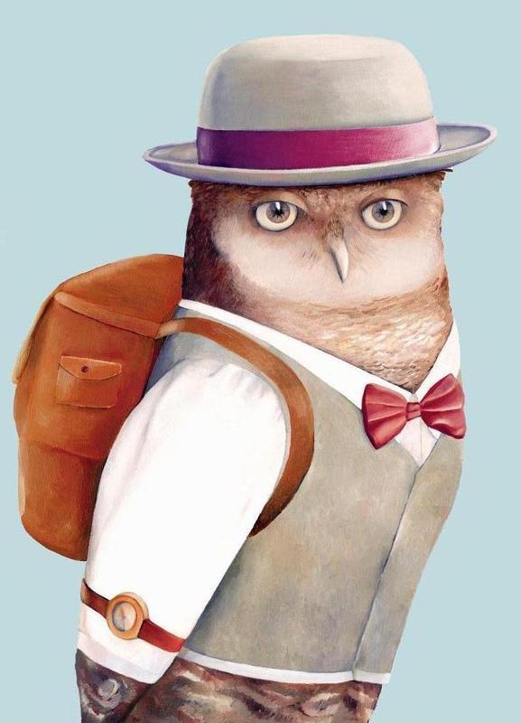 Owl toile