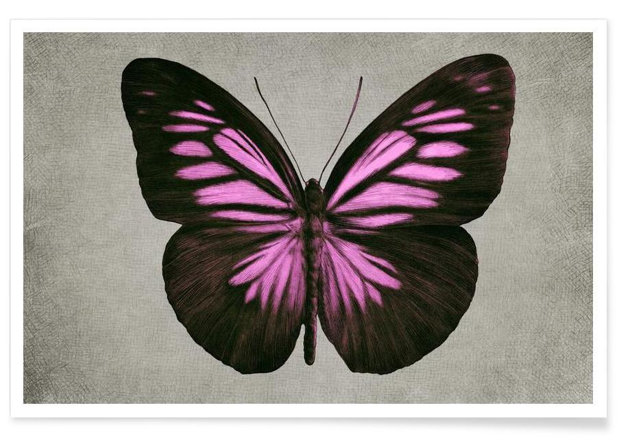 Papillon (pink) Poster