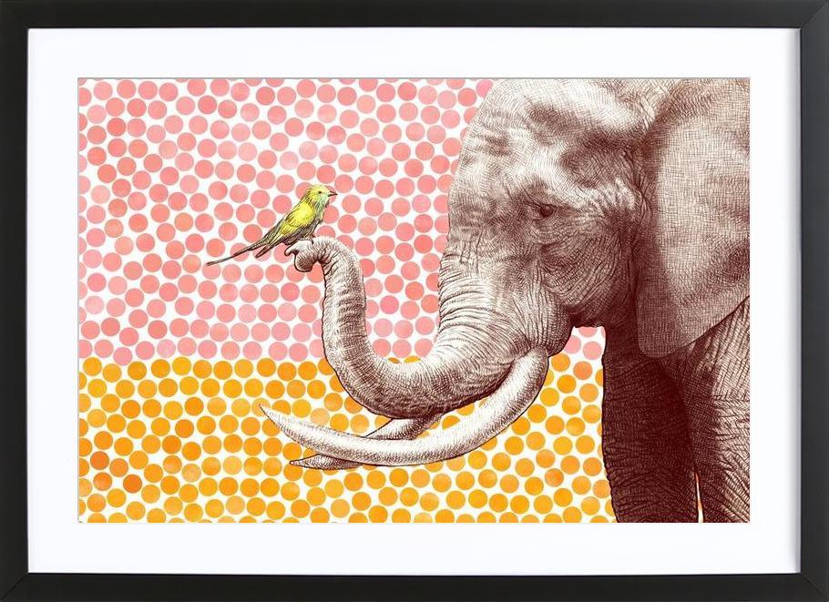 Elephant and Bird Framed Print