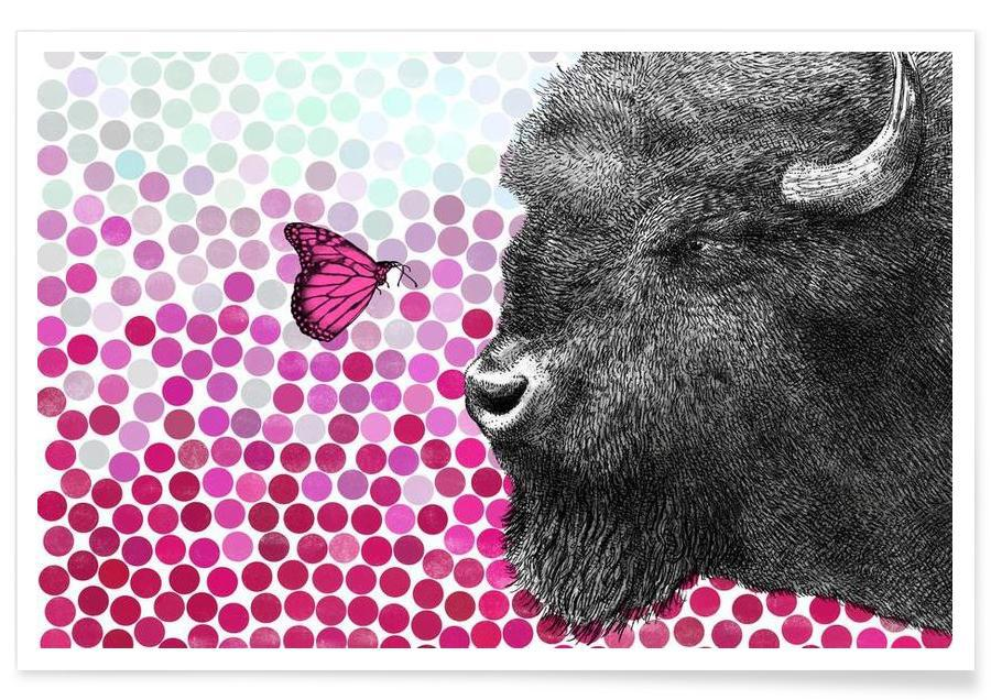 Bison and Butterfly poster