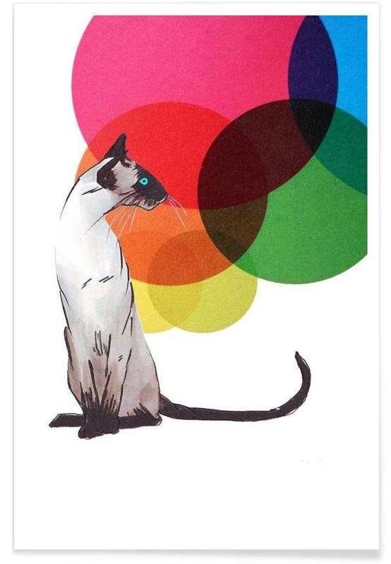 Siamese Cat with colorful balls affiche