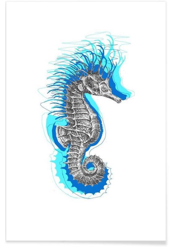 Seahorse affiche